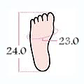 foot size